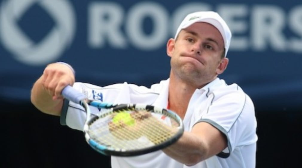 It looks like another Roddick-Del Potro final is on the cards in Washington DC after the other big names lost on Tuesday.