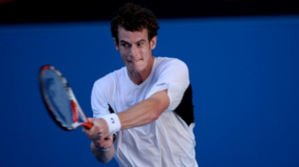 Andy Murray produced a less than convincing performance against Italys Andreas Seppi but still managed to book his place in the last eight in Rotterdam on Thursday.