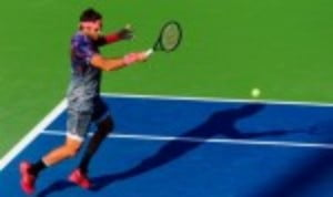 Juan Martin del Potro climbed off his his sickbed to stage the most extraordinary comeback of his career at the US Open