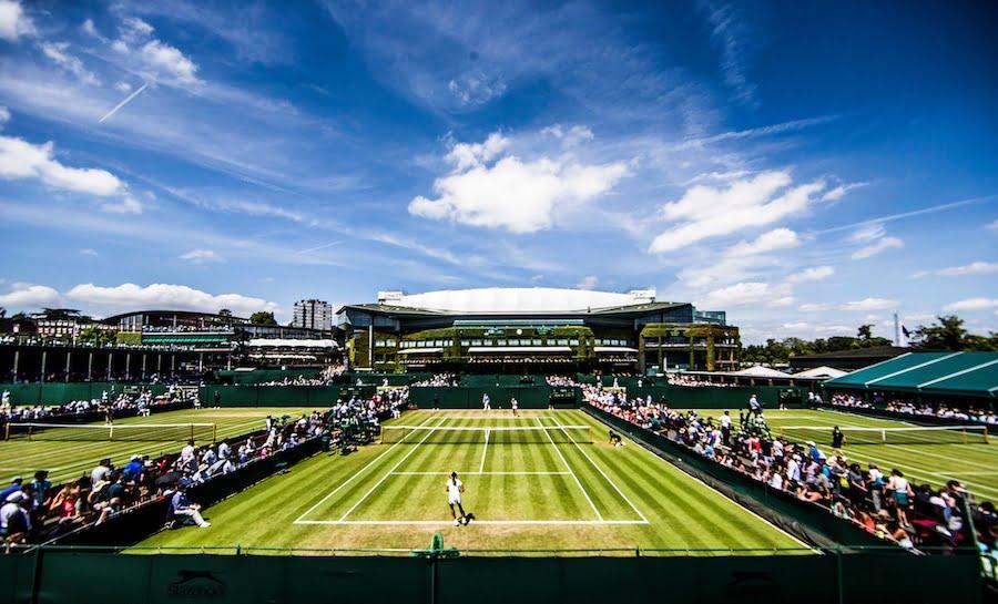 Wimbledon grass courts