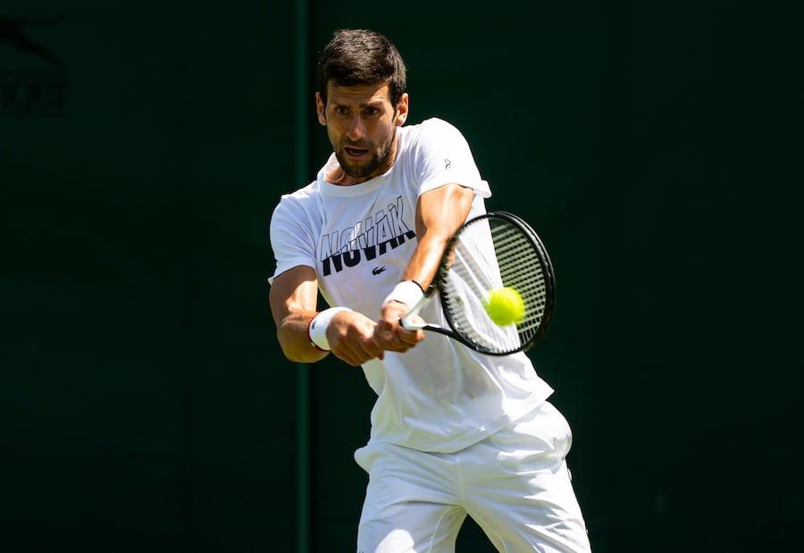 Novak Djokovic Wimbledon 2019 first round victory
